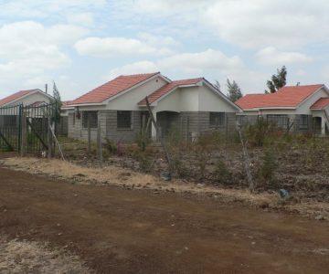 Cherry-Valley-Estate-Ruiru-1024x768